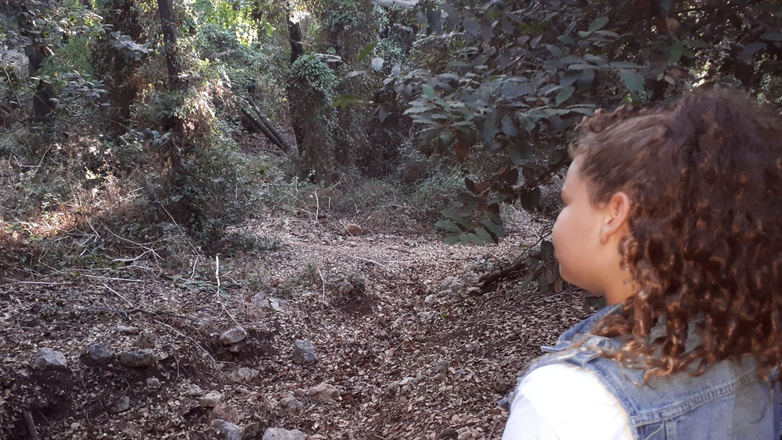 יום כיפור ביער הפיות